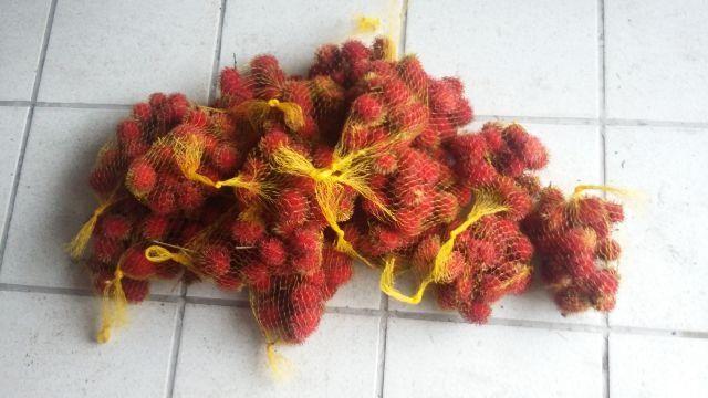 Fruta Ramutam