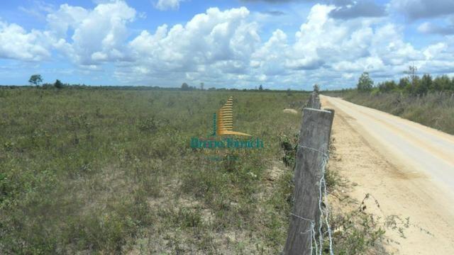 Fazenda em Eunápolis - Foto 3