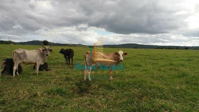 Fazenda Itamaraju