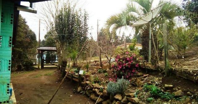 Sítio na Vila Rural (Queimadas) em Inácio Martins - Área: 5,044.09 m² - Foto 11