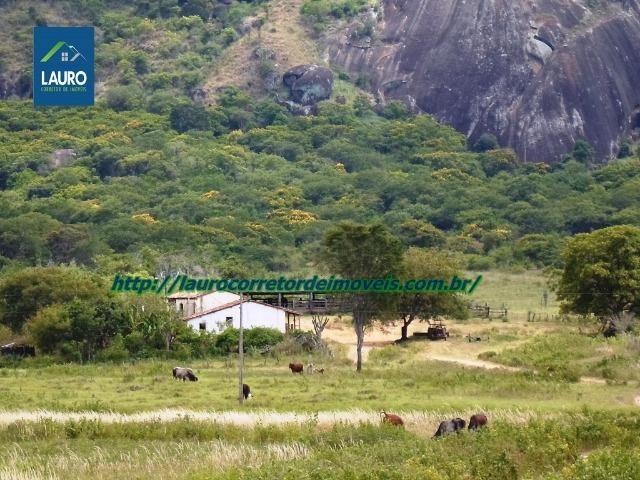 Linda fazenda com 620 Hect. em Pedra Azul-MG - Foto 16