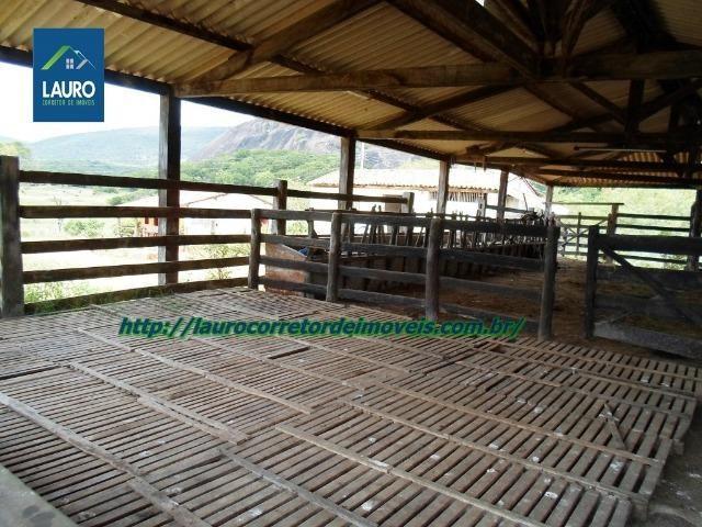 Linda fazenda com 620 Hect. em Pedra Azul-MG - Foto 14
