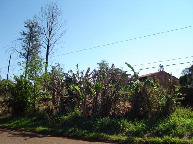 Terreno para alugar em Fazenda gleba palhano, Distrito espirito santo cod:00611.008 - Foto 3