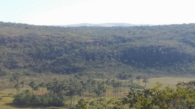 Chácara ha 14 Km de Alto Paraíso de Goiás - Chapada dos Veadeiros - Foto 10