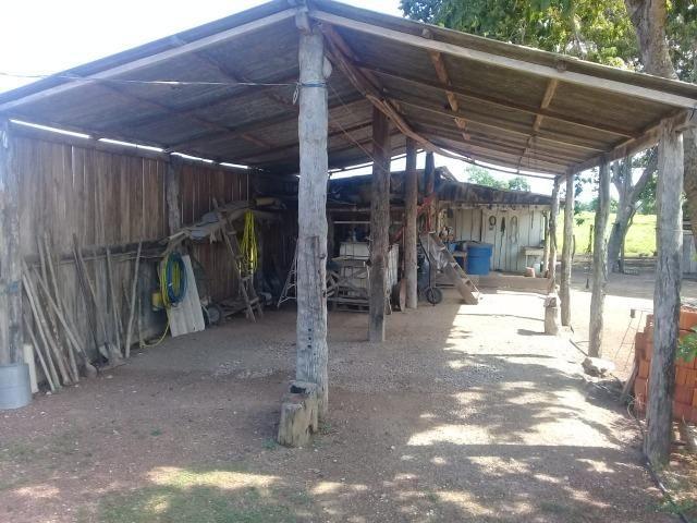 Fazenda toda formada a 99 km de Várzea Grande sentido Cáceres - Foto 2