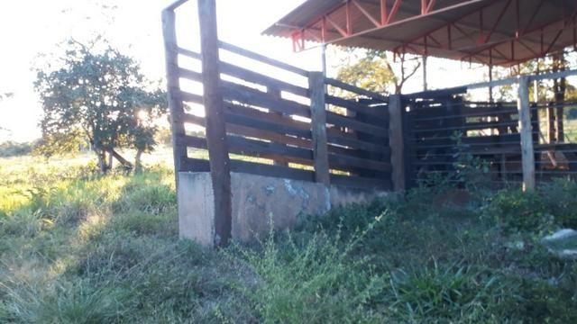 Chácara 8,32 hectares - Foto 11