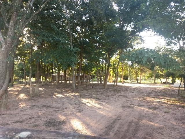 Chácara 8,32 hectares - Foto 14