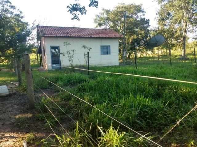 Chácara 8,32 hectares - Foto 4