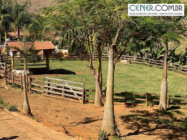1878/Fazenda de alta qualidade com 66 ha em ótima localização - Foto 18