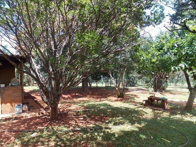 Chácara Excelente 2,5 Alqueires, Próximo à Rozelandia-Bela Vista de Goiás - Foto 11