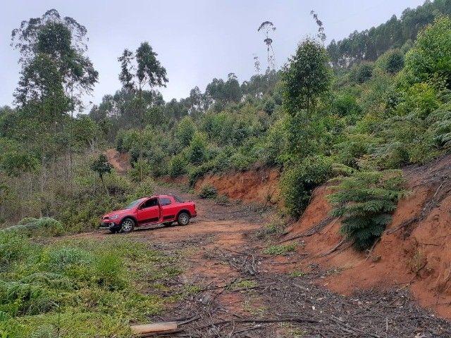 DM- Sítio/Terreno Grande em Santa Teresa 13 hectares - Foto 13