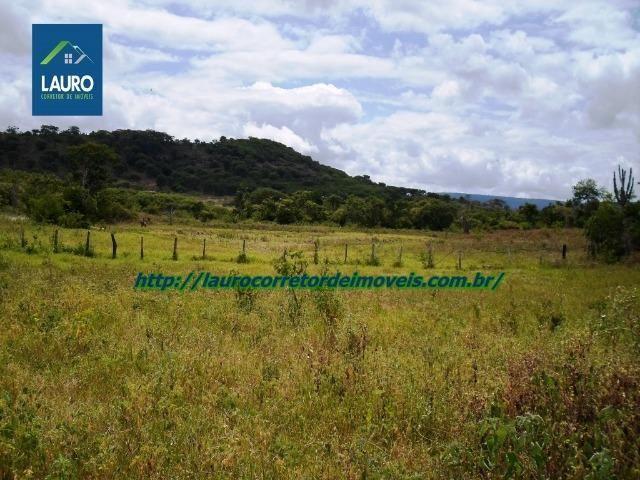 Linda fazenda com 620 Hect. em Pedra Azul-MG - Foto 12