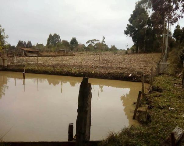 Sítio na Vila Rural (Queimadas) em Inácio Martins - Área: 5,044.09 m² - Foto 9