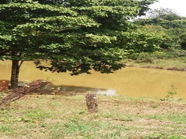 Chácara à venda com 3 dormitórios em Zona rural, Cezarina cod:em527 - Foto 8