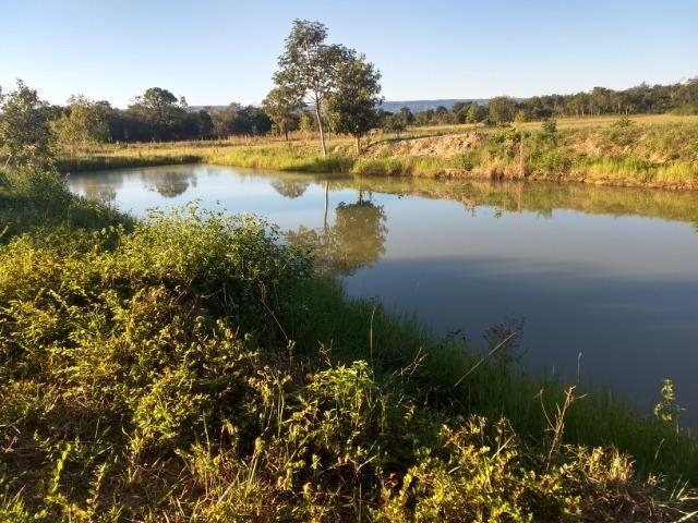 Chácara 8,32 hectares - Foto 15