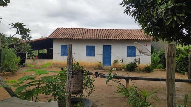 Vendo Fazenda Nova Venécia - 17 Alqueires - Foto 5