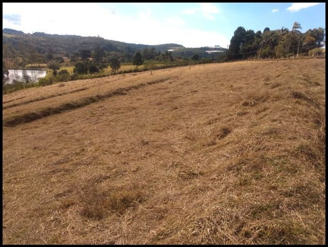 85- Compre seu terreno agora, sem complicações - Foto 6