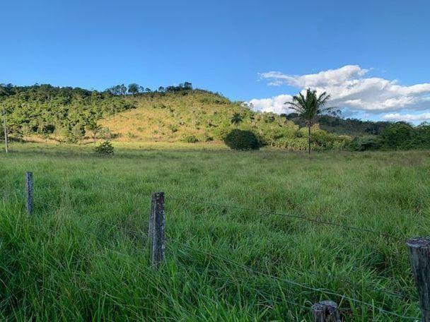Vendo Fazenda 12 Alqueires, 55 Km de Palmas - Foto 3