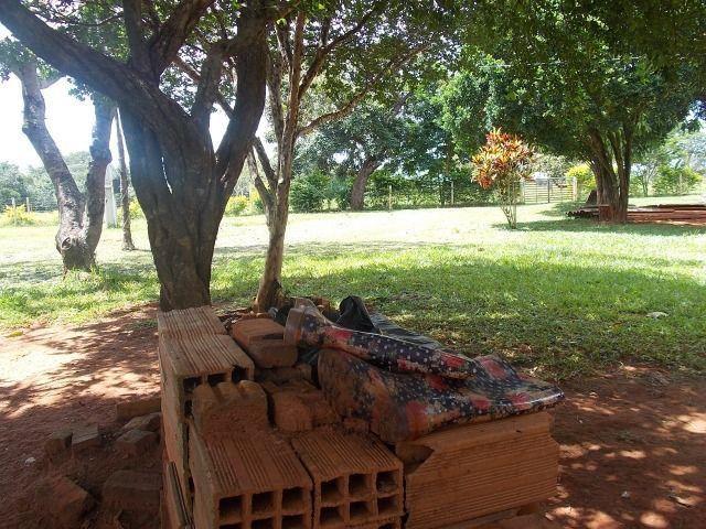 Chácara Excelente 2,5 Alqueires, Próximo à Rozelandia-Bela Vista de Goiás - Foto 8