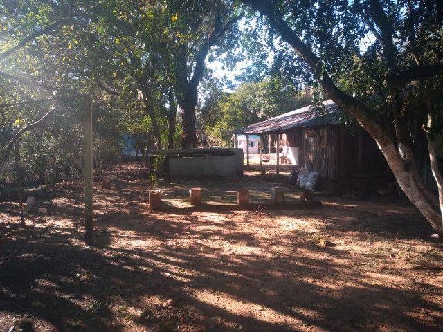Velleda oferece sítio 3200 m², completo, casa, galpão, piscina, etc confira - Foto 10