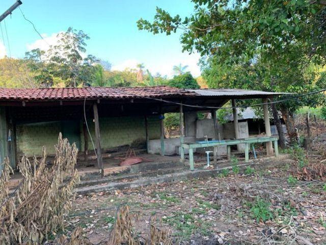 Vendo Fazenda 12 Alqueires, 55 Km de Palmas - Foto 6