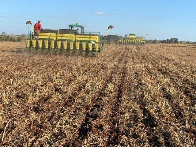 Invista no campo crédito rural para plantio, reforma de pasto em geral. - Foto 3