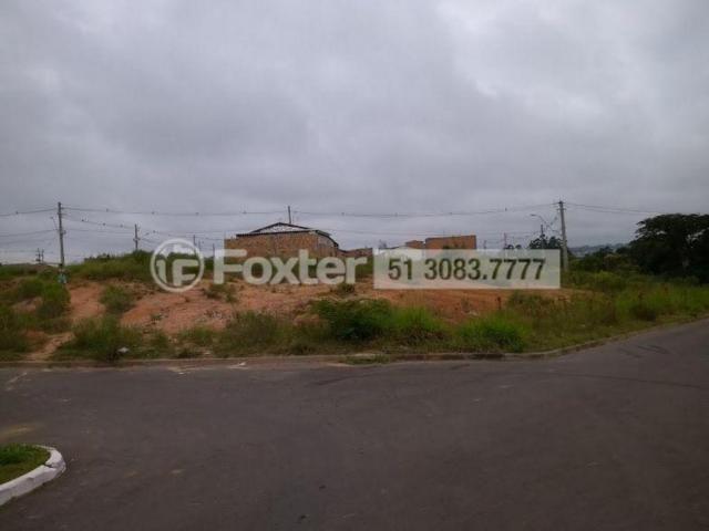 Terreno à venda em Mário quintana, Porto alegre cod:170045 - Foto 11
