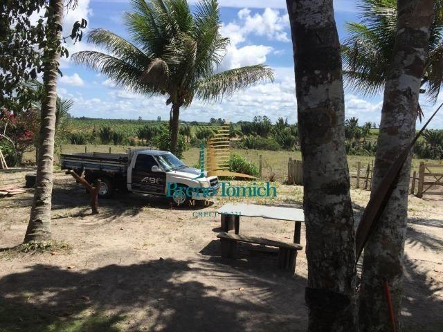 Fazenda em Belmonte-BA - Foto 7