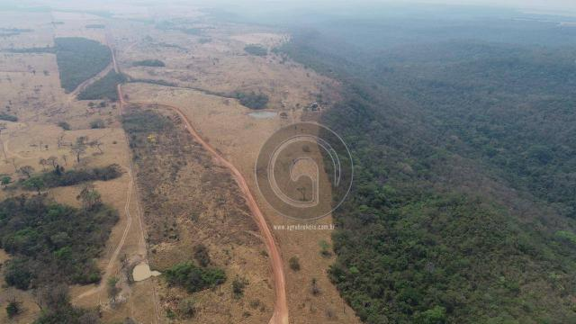 Fazenda 95 ha região chapada dos guimarães - Foto 13