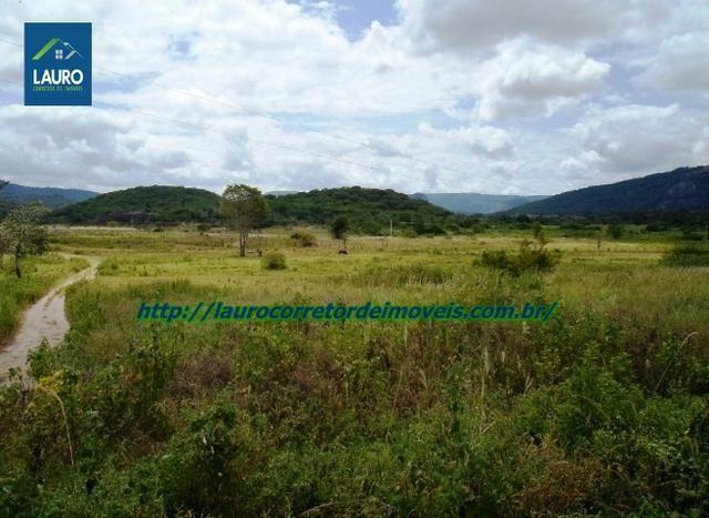 Linda fazenda com 620 Hect. em Pedra Azul-MG - Foto 8