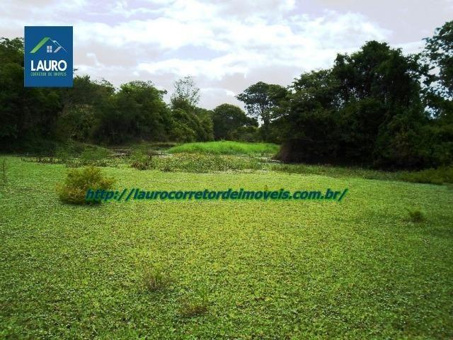 Linda fazenda com 620 Hect. em Pedra Azul-MG - Foto 17