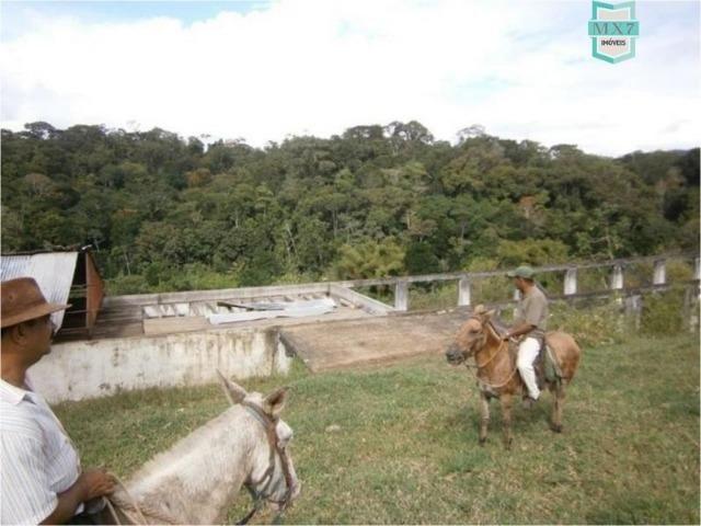 Fazenda na cidade de Ibirataia a 340 Km de Salvador e 320 Km de Camaçari - Foto 15
