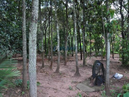 Chácara à venda com 5 dormitórios em Vila pinhal broa, Itirapina cod:4319 - Foto 18