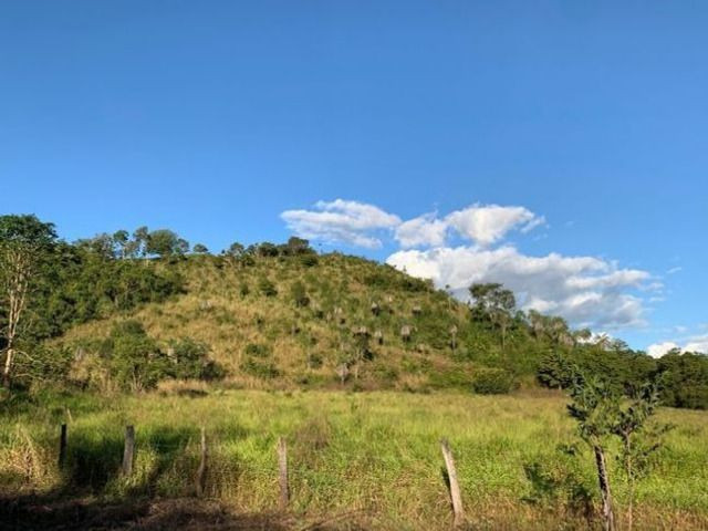 Vendo Fazenda 12 Alqueires, 55 Km de Palmas - Foto 7