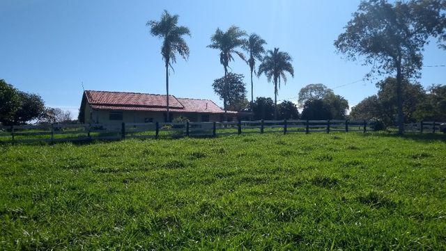 """Ótimo sítio 35 ha"" - Sidrolândia MS, Brasil - Foto 13"