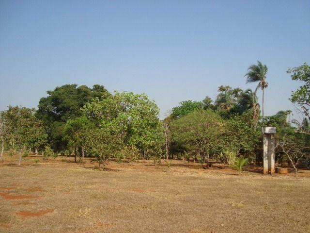 Chácara Excelente 2,5 Alqueires, Próximo à Rozelandia-Bela Vista de Goiás - Foto 2