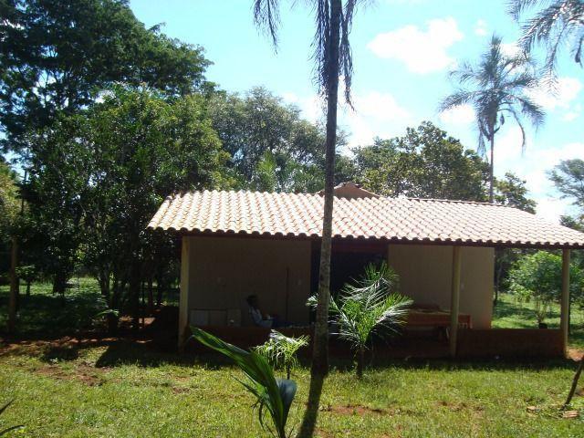 Chácara Excelente 2,5 Alqueires, Próximo à Rozelandia-Bela Vista de Goiás - Foto 6