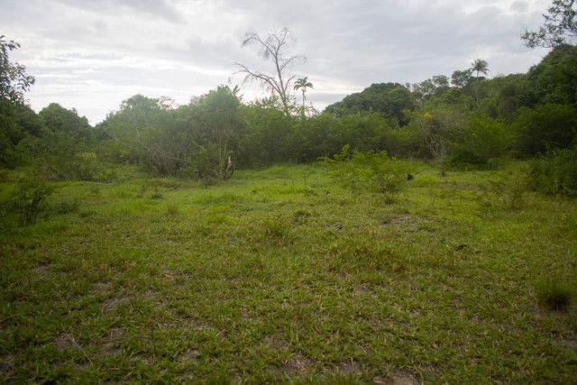 Área Rural de 42.209m² - Foto 4