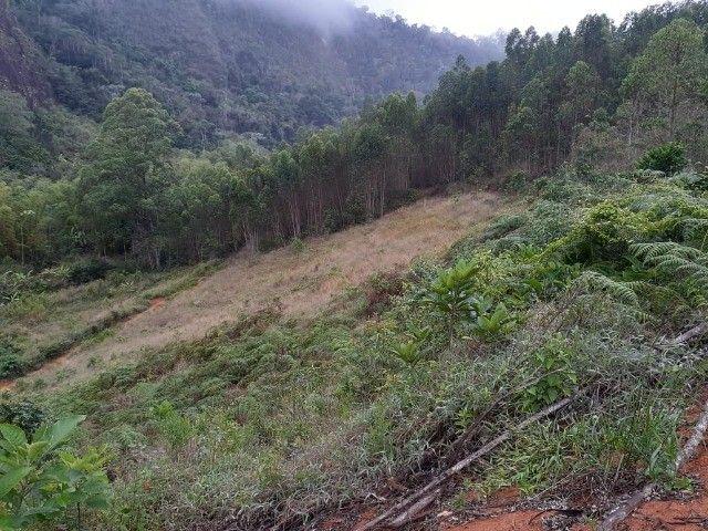 DM- Sítio/Terreno Grande em Santa Teresa 13 hectares - Foto 14