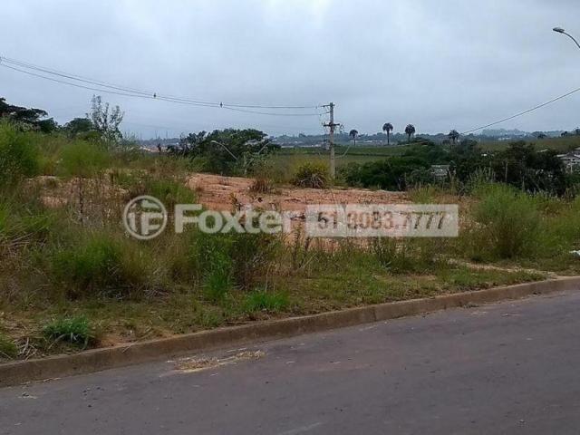 Terreno à venda em Mário quintana, Porto alegre cod:170045 - Foto 8