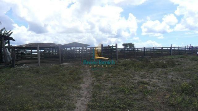 Fazenda em Eunápolis - Foto 11