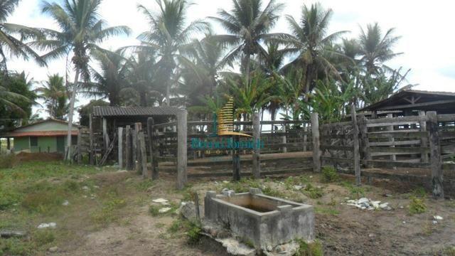 Fazenda em Eunápolis - Foto 16