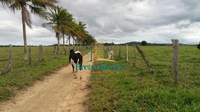 Fazenda Itamaraju - Foto 17