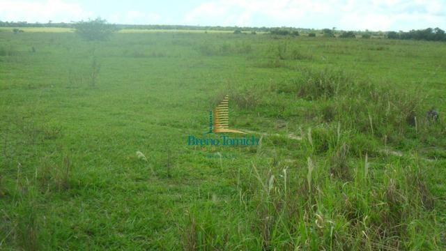 Fazenda em Eunápolis - Foto 2
