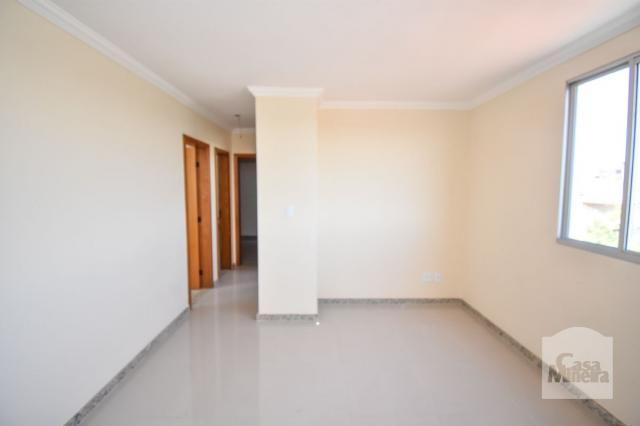 Apartamento à venda com 3 dormitórios em Alto caiçaras, Belo horizonte cod:247835 - Foto 15