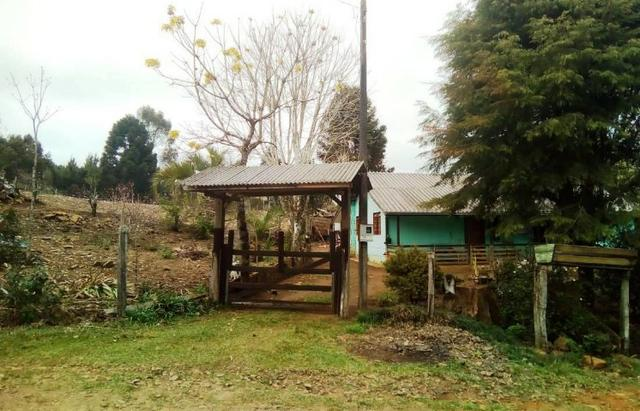 Sítio na Vila Rural (Queimadas) em Inácio Martins - Área: 5,044.09 m²
