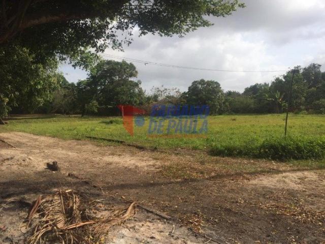 Terreno à venda com 0 dormitórios em Chácara itapiracó, São luís cod:617 - Foto 5