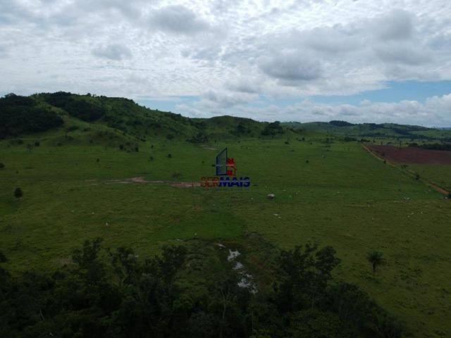 Fazenda à venda, por R$ 19.950.000 - Alta Floresta D'Oeste/RO - Foto 3