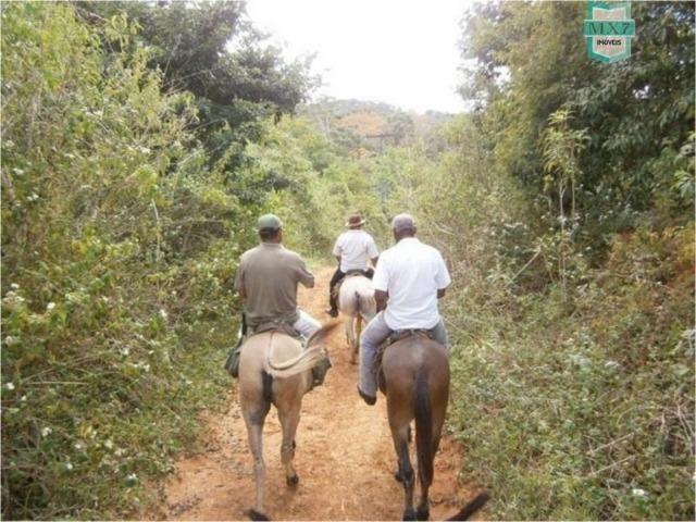 Fazenda na cidade de Ibirataia a 340 Km de Salvador e 320 Km de Camaçari - Foto 12