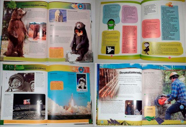 Kit 4 livros infantis: Recordes Mundiais - 2, Revolução Verde e Piadas para Rachar o Bico - Foto 6